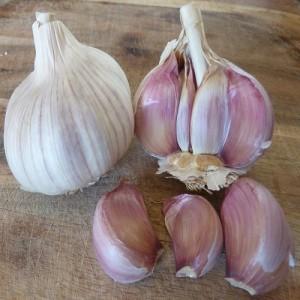 Uti Garlic