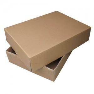 Telescopic Cardboard Box