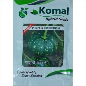 Pumpkin Hybrid Seeds
