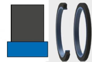 Rod-Piston Seals