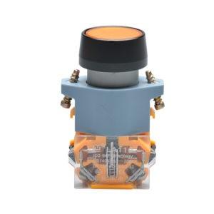 LA110-A1/Plastic Button Switch, Push Button