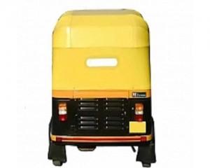 Auto Rickshaw Hood Leather