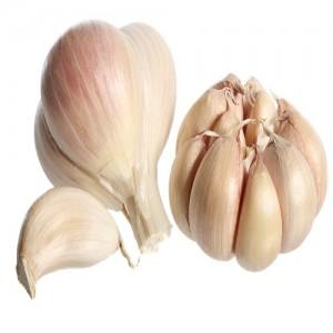 Fresh Bom Garlic