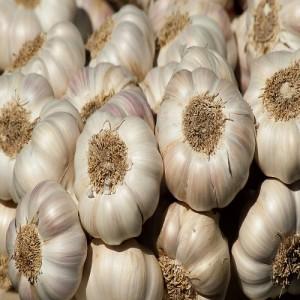 Mandsaur Garlic