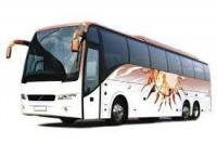 Air Taxi, Bus Rentals & Hiring