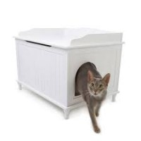 Pet Furniture, Accessories & Products